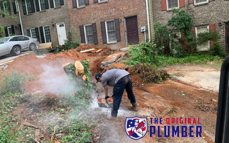 Sewer Line Tree Roots: How to get Tree Roots out of Sewer Line