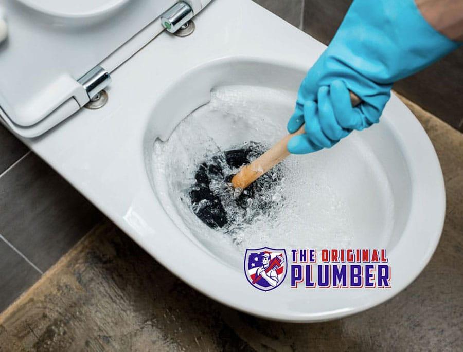 toilet-not-flushing